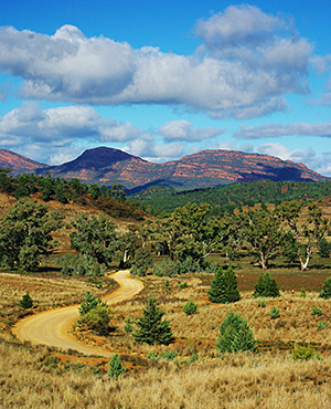 Wilpena Pound in the Flinders Ranges