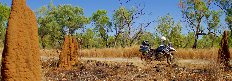 Termite mounds abound...