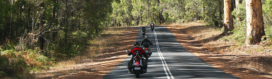 Tree lined roads near Margaret River